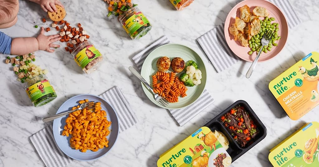nurture life kids meal subscription - featured image